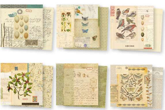 """7 Gypsies - Conservatory Paper Variety Pack 8"""" x 8"""""""