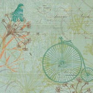 Engraved Garden - Bike