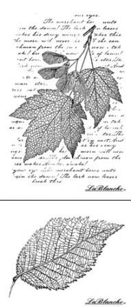 Lablanche Silicone Stamp - Leaves