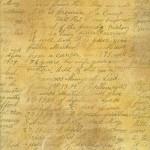 Kelly Panacci - Catherine's Memoir Paper