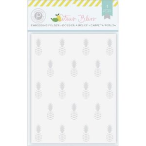 "Citrus Bliss Embossing Folder 4""X6"""