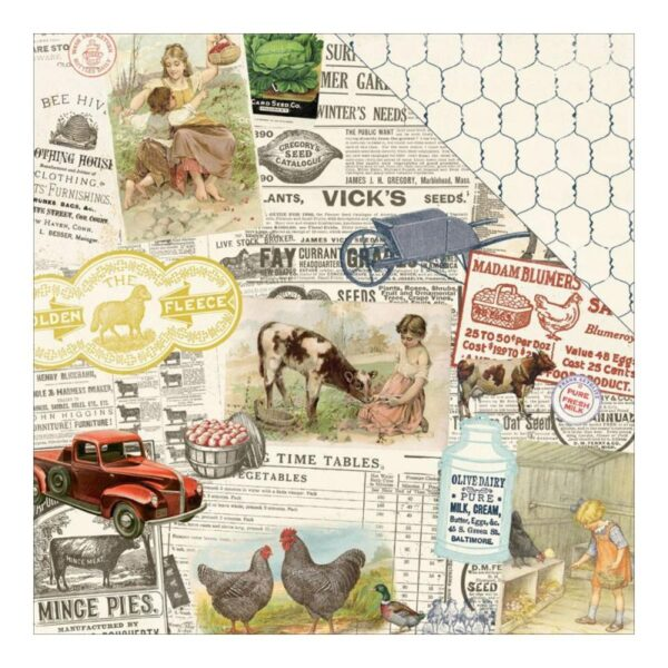Homestead - Montage Farmhouse Collage/Chicken Wire
