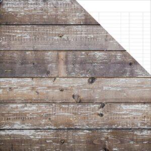 Sn@p! Basics Color Vibe - Cedar/White Ledger
