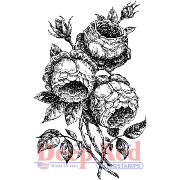 English Roses Stamp