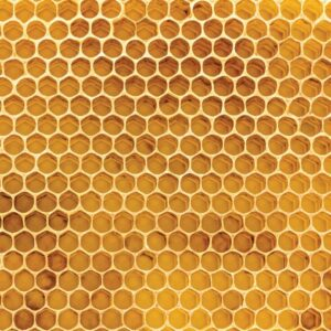 100% Natural - Honeycomb
