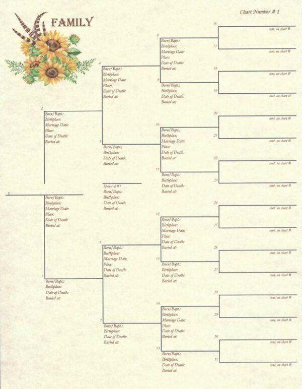 Family - Pedigree Chart 1