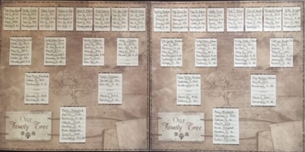 Ancestry 2 - Our Family Tree Chart