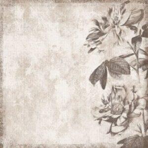Black & White Flower Border