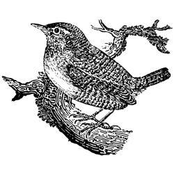 Lablanche Silicone Stamp - Wren