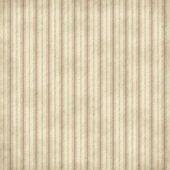 "Scrapbook Customs - Family History Wrinkled Stripes - 12"" x 12"""