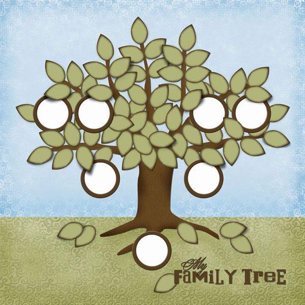 "Scrapbook Customs - Family Tree - 12"" x 12"""