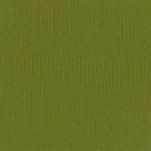 Bazzill Basics Canvas Texture 12 x 12 Saguaro