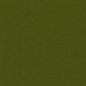 Bazzill Basics - 12 x 12 Cardstock - Grass Cloth - Palo Verde
