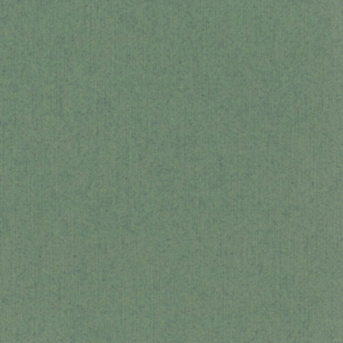 "Bazzill Cardstock - Sage/Classic - 12""X12"""