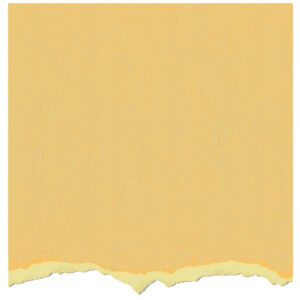 Core'dinations - Tim Holtz - Distress Collection - 12 x 12 Textured Cardstock - Scattered Straw