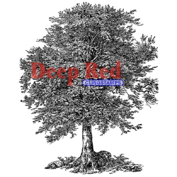 Deep Red - Cling Stamps - Oak Tree