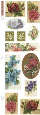 Nostalgiques - Floral Delight