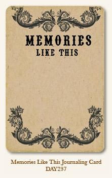 Life Stories - Memories Like This - Journaling Card
