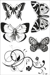 Kaisercraft - Tigerlily - Clear Stamps