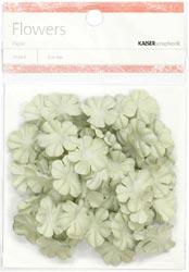 Paper Flowers - 2cm - Mint