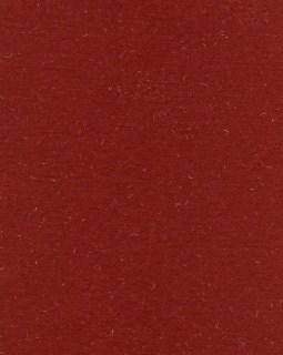 "8 1/2"" x 11"" Burnt-Red Grass"