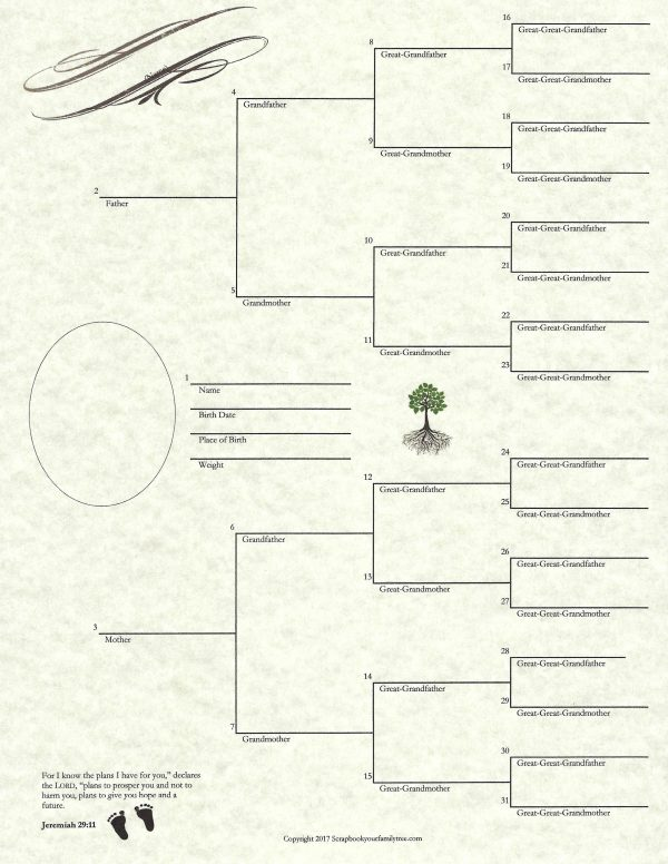 """Our Roots - 8.5"""" x 11"""" - Baby Chart"""