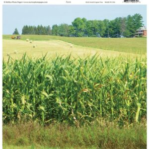 McRice Photo Papers - Farm