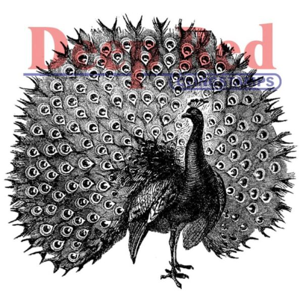 Deep Red - Cling Stamps - Peacock
