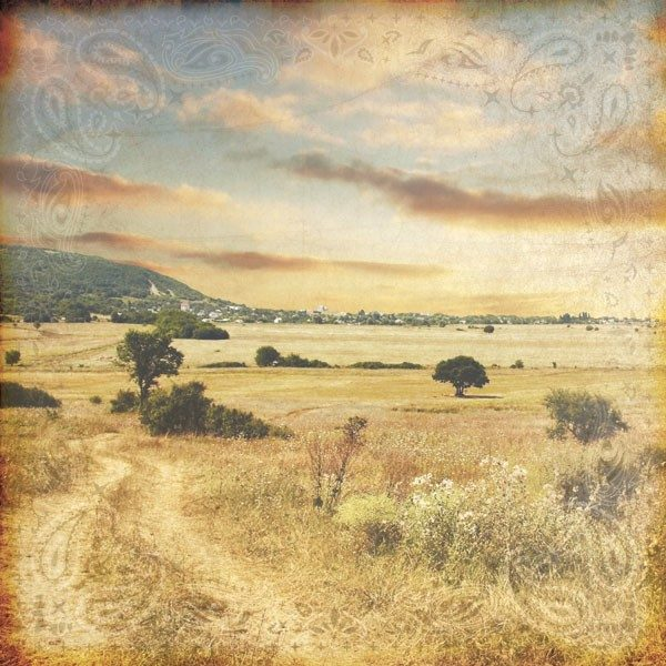 Paper House - Home on the Range
