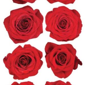 Sticko Photo Flowers Stickers - Red Roses