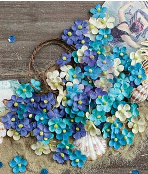 French Riviera Flowers - Saint Tropez