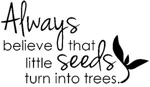 Always believe that little seeds turn into trees
