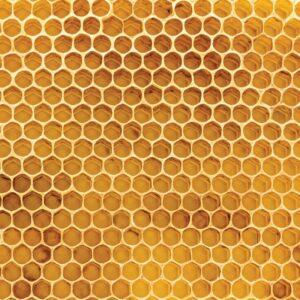 100% Natural - Honeycomb
