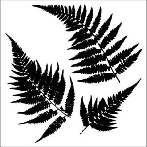 "The Crafter's Workshop – 12"" x 12"" Fern Stencil"