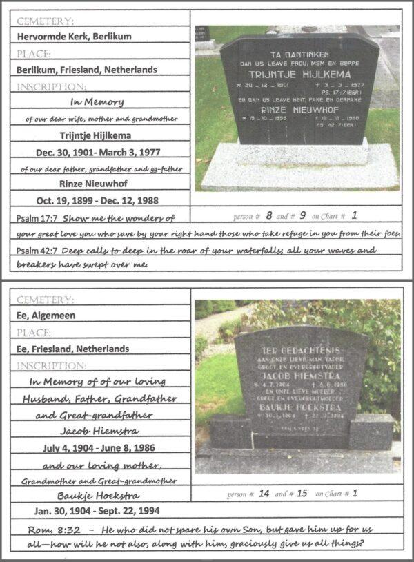 """Oak Tree - 6""""x 8""""- Cemetery Cards"""